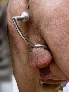 Cockring boule anal